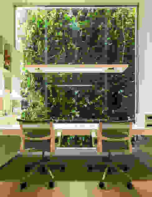 Estudios y despachos modernos de Felipe Bueno Arquitetura Moderno
