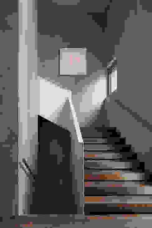 Halle mit Aufgang zum Obergeschoss Moderner Flur, Diele & Treppenhaus von feliz Modern
