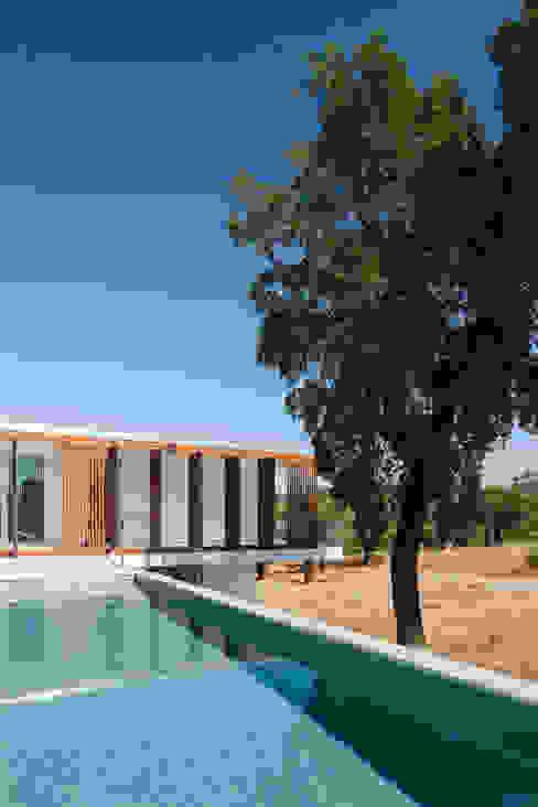 Swiming Pool Piscinas modernas por OPERA I DESIGN MATTERS Moderno