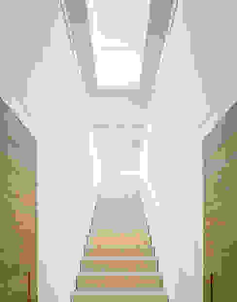 Moderne gangen, hallen & trappenhuizen van steimle architekten Modern