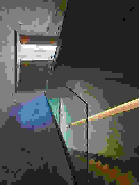 Duplexhouse Linz Moderner Flur, Diele & Treppenhaus von HAMMERER Architekten GmbH/SIA Modern