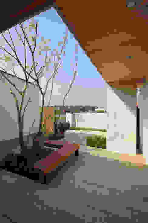 Modern style gardens by TAMAI ATELIER Modern