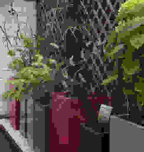 Bacs IMAGE'IN Hauts en couleurs ! ATELIER SO GREEN Balcon, Veranda & Terrasse modernes