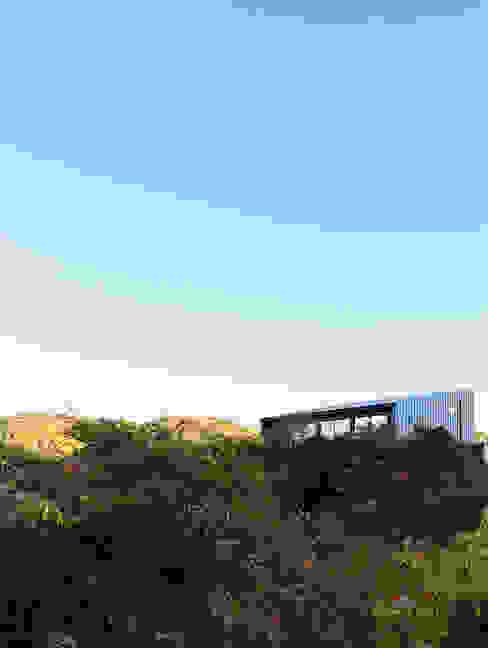 外観 モダンな 家 の 一級建築士事務所シンクスタジオ モダン