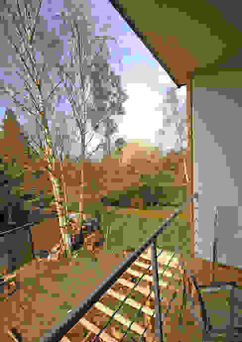 Situé dans les arbres Balcon, Veranda & Terrasse modernes par DCA Moderne