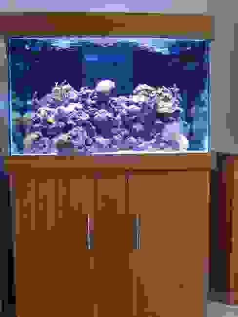 36″LX24″HX24″W STANDARD MARINE TANK WITH CABINET & HOOD by Prime Aquariums Ltd Classic