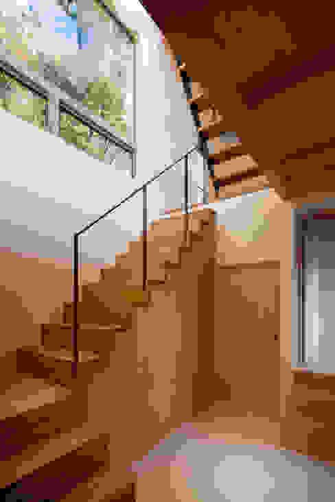 Modern Corridor, Hallway and Staircase by HAN環境・建築設計事務所 Modern Wood Wood effect