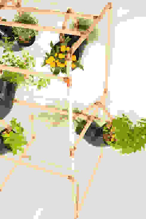 Jardines de estilo  por Mono Studio,