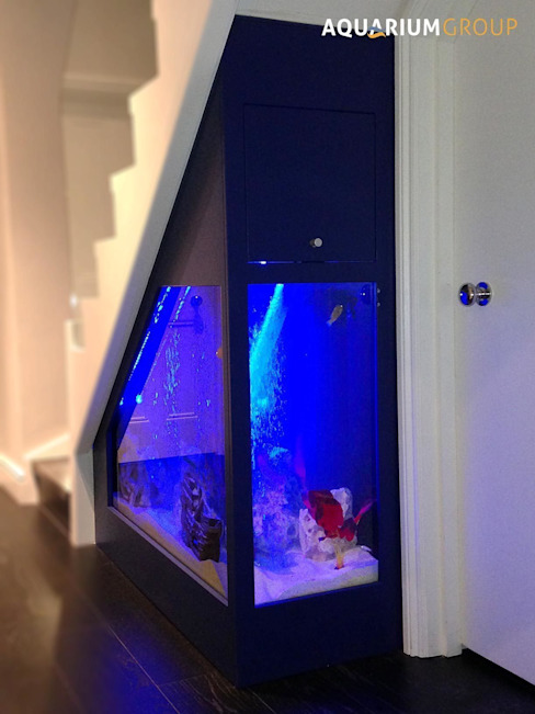 Under Stairs Aquarium Couloir, entrée, escaliers modernes par AquariumGroup Moderne