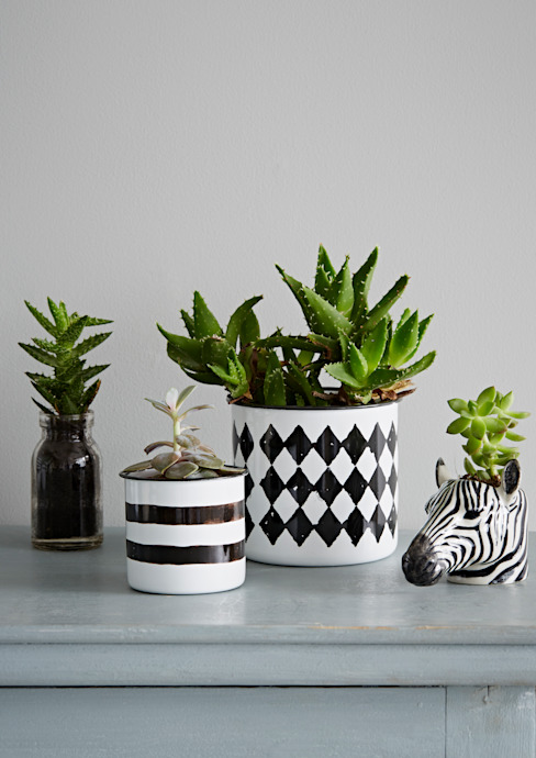 Monochrome Planter Collection Oleh rigby & mac Eklektik