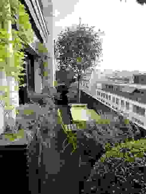 Balcones y terrazas de estilo clásico de FIORELLINO paysagiste Clásico