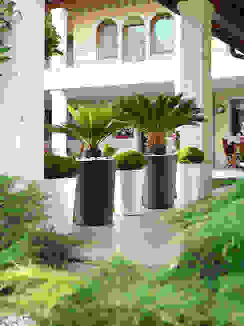 TerraForm JardimPotes e vasos