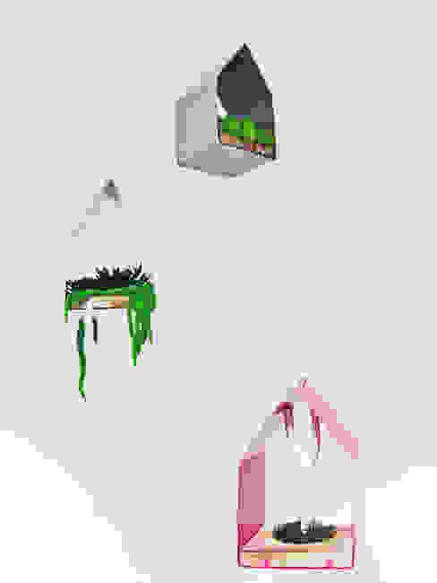 室內景觀 by Adventive