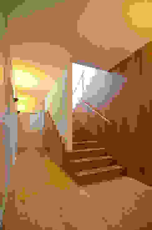 Коридор, прихожая и лестница в рустикальном стиле от Germano de Castro Pinheiro, Lda Рустикальный Дерево Эффект древесины