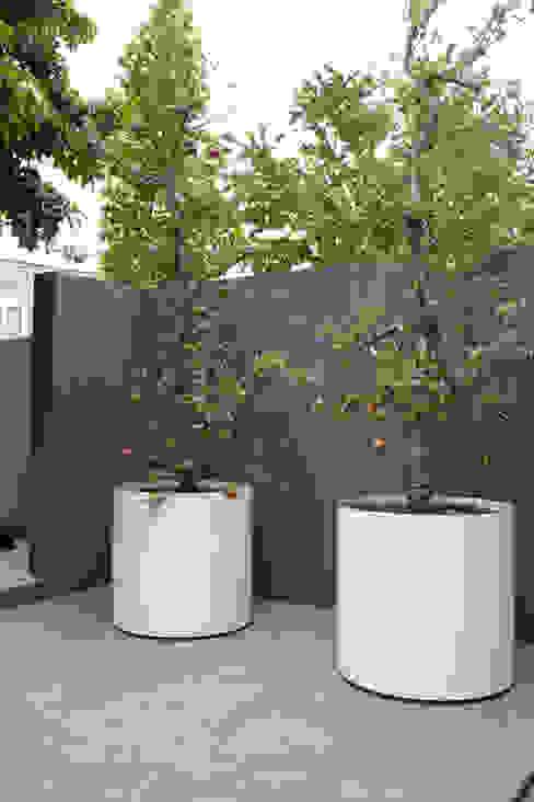Jardines de estilo  por Biesot, Moderno