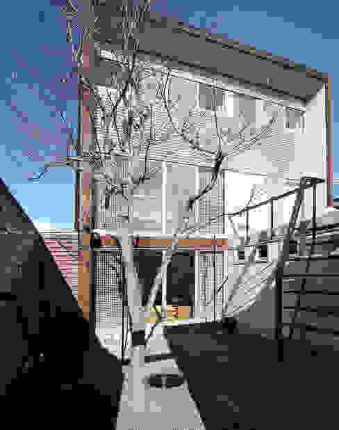 中庭: 遠藤浩建築設計事務所 H,ENDOH  ARCHTECT  &  ASSOCIATESが手掛けた家です。,モダン