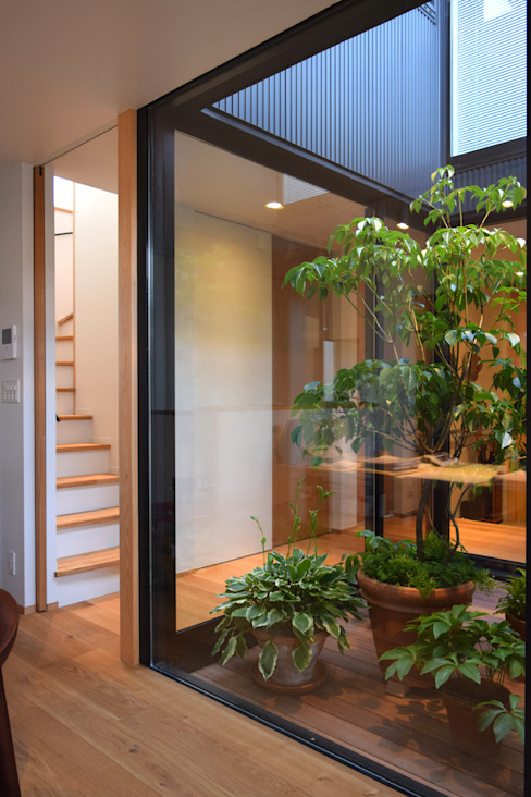LIGHT COURT with PLANTS Modern style gardens by FURUKAWA DESIGN OFFICE Modern
