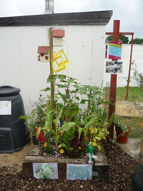 Jardines de estilo  de Donna Walker Design, Ecléctico