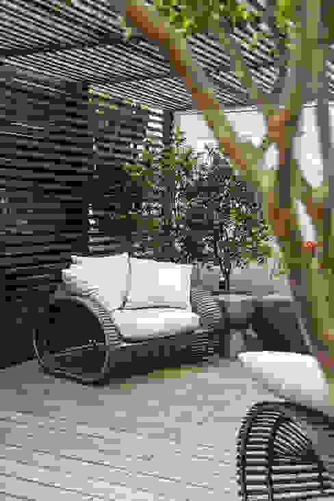 Jardines modernos: Ideas, imágenes y decoración de Denise Barretto Arquitetura Moderno
