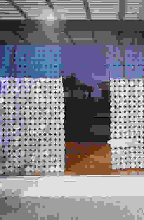 WINDOW | 百日紅の家 | RC造高級注文住宅 モダンな 窓&ドア の Mアーキテクツ|高級邸宅 豪邸 注文住宅 別荘建築 LUXURY HOUSES | M-architects モダン