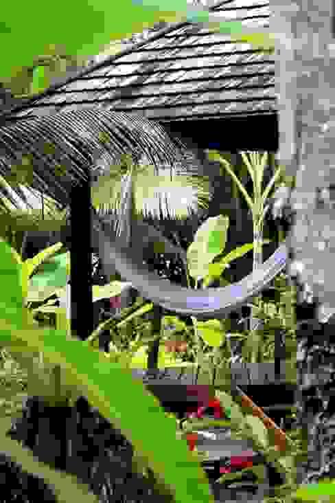Tropical style garden by Eduardo Luppi Paisagismo Ltda. Tropical