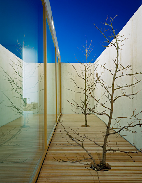 Patios by Rossetti+Wyss Architekten
