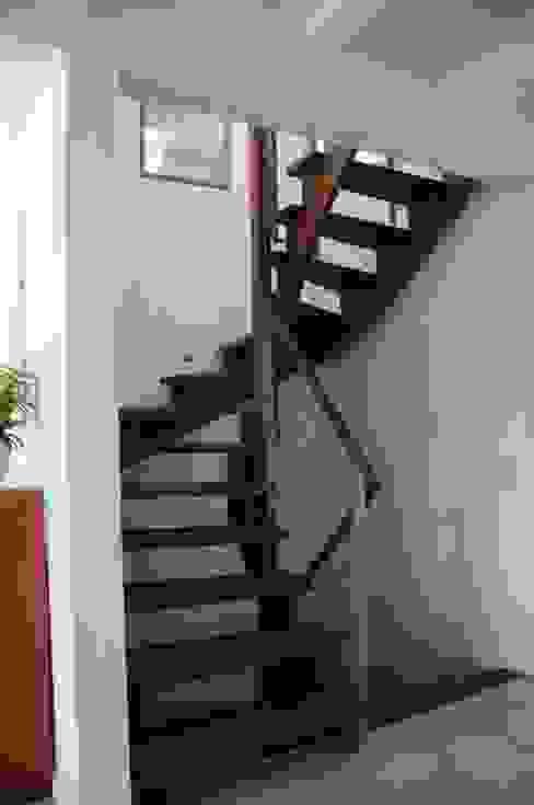 Nowoczesny korytarz, przedpokój i schody od Dammann-Haus GmbH Nowoczesny