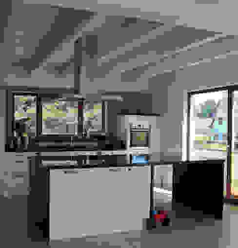 Nowoczesna kuchnia od Dammann-Haus GmbH Nowoczesny