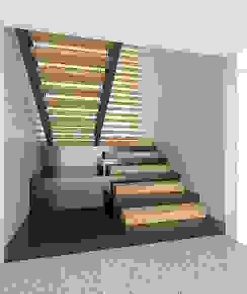 Casa EF Pasillos, vestíbulos y escaleras modernos de Taller Habitat Arquitectos Moderno