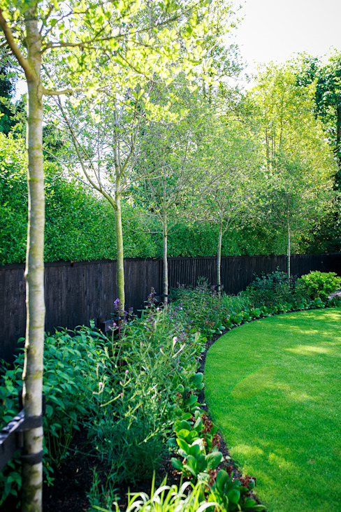 Planted border with fence and hedge Jardines de estilo minimalista de Barnes Walker Ltd Minimalista