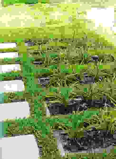 caminos entre verde Jardines de estilo clásico de BAIRES GREEN Clásico