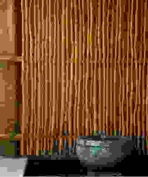 Casa Cariza:  de estilo tropical por BR  ARQUITECTOS, Tropical