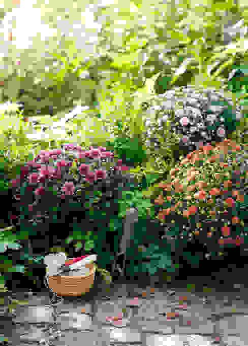 Pflanzenfreude.de Jardins clássicos