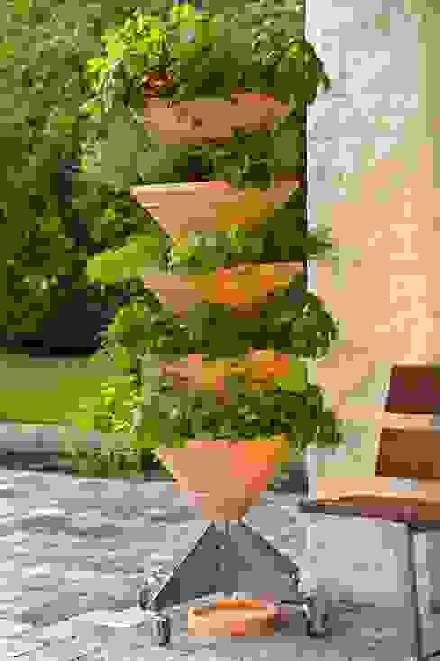 homify Balkon, Veranda & TerrassePflanzen und Blumen