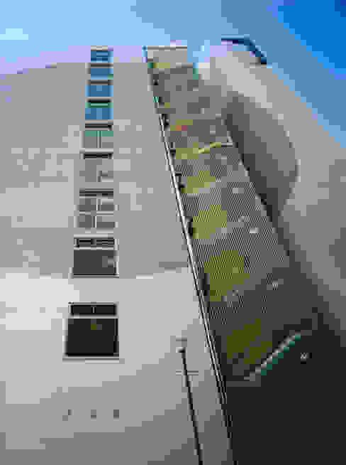 北面階段部分外壁面見上げ: あお建築設計が手掛けた廊下 & 玄関です。