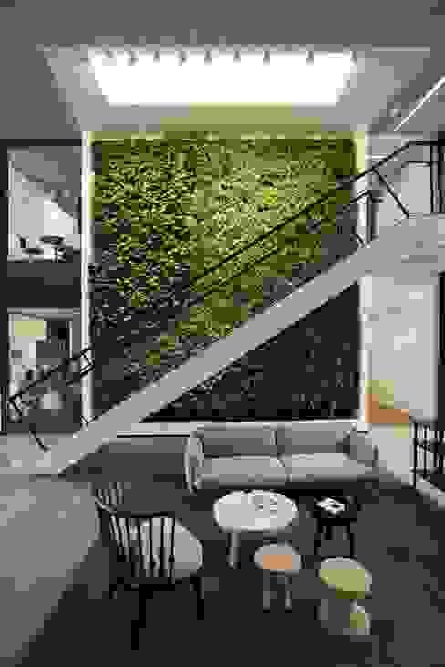 Jardines de estilo moderno de Green Gallery Moderno