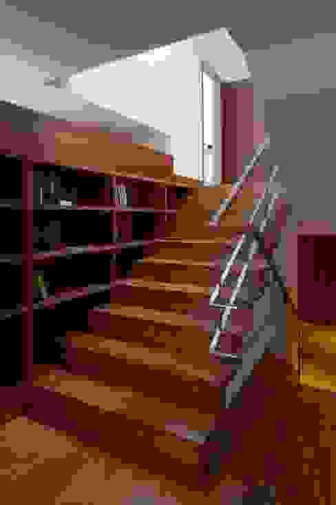 CASA M+F Corredores, halls e escadas modernos por joão rapagão Moderno