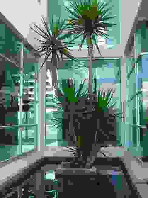 Cantemual: Jardines de estilo  por SANTIAGO PARDO ARQUITECTO, Moderno