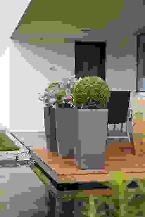 Fertiger Garten Langeder Gartenharmonie