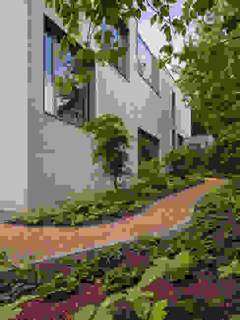 ARCHITEKTEN BRÜNING REIN Modern style gardens