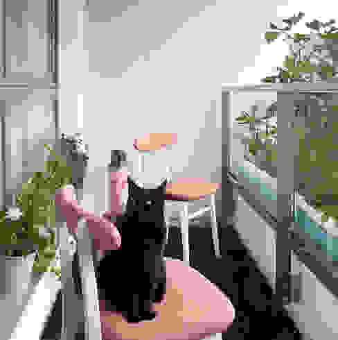 Sic! Zuzanna Dziurawiec Skandinavischer Balkon, Veranda & Terrasse