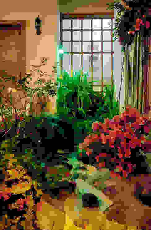 la cascada Jardines asiáticos de Excelencia en Diseño Asiático Bambú Verde