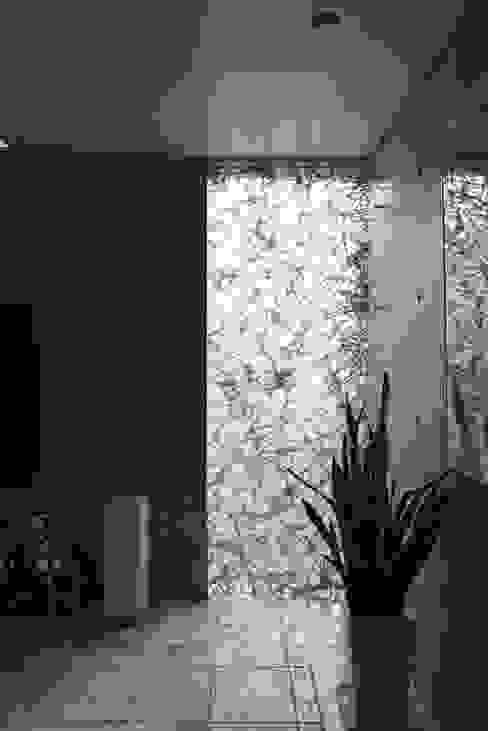 装飾ガラスを用いたリビング|松原の家 モダンな 窓&ドア の U建築設計室 モダン ガラス