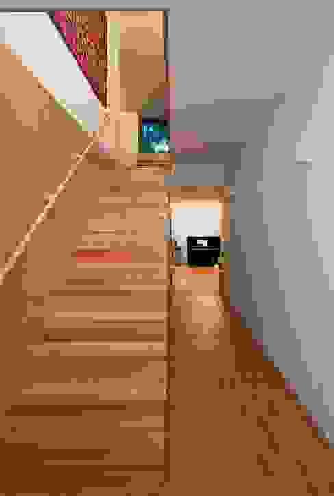 Casa Conde Corredores, halls e escadas modernos por SAMF Arquitectos Moderno Madeira Acabamento em madeira