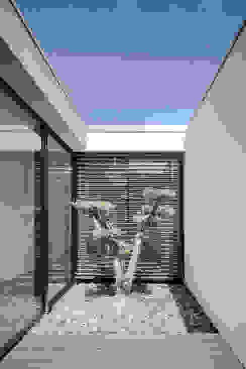 Casa em Gandra - Raulino Silva Arquitecto Jardins minimalistas por homify Minimalista
