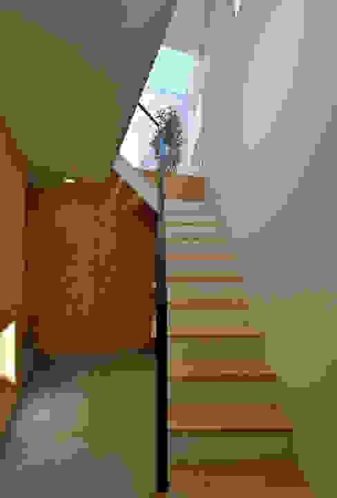 空へとつづく階段 ミニマルスタイルの 玄関&廊下&階段 の 株式会社ブレッツァ・アーキテクツ ミニマル
