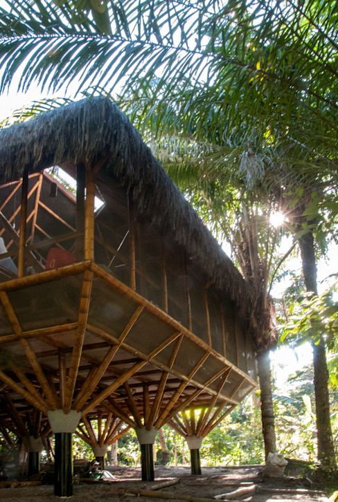 Tropical walls & floors by IR arquitectura Tropical Bamboo Green