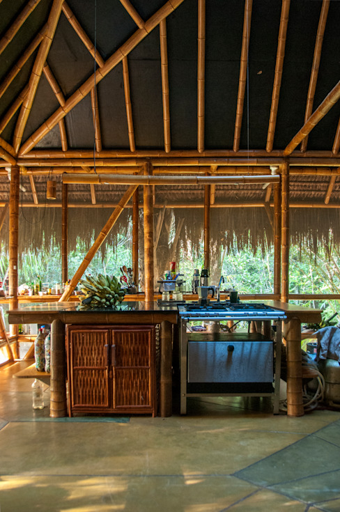 Tropical style kitchen by IR arquitectura Tropical Bamboo Green