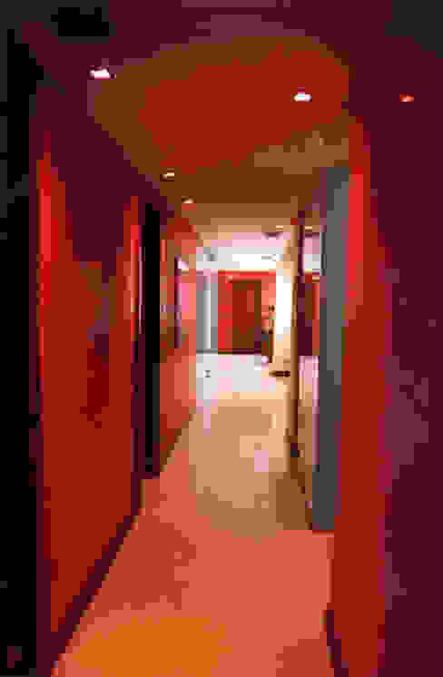 Oficinas generales Javier González Pasillos, vestíbulos y escaleras de estilo moderno