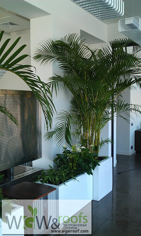 Реализация Зимнего сада г. Днепропетровск Зимний сад в стиле модерн от WGWRoofs - Мастерская зеленых стен и крыш Модерн